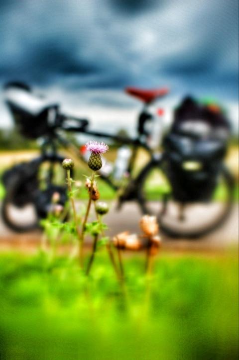20110901-010853.jpg