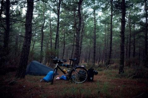 roblutterturkishforest1